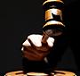 Criador de emas diz que vai lutar na Justiça pela guarda dos animais