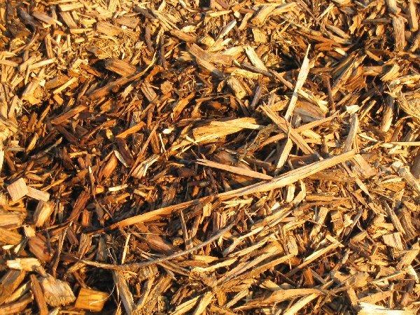 Desenvolvimento sustentável de projetos industriais sustentáveis de aproveitamento da biomassa