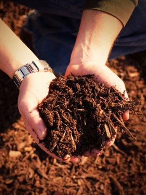 Resulta apresenta processos inovadores no setor de moagem úmida de biomassa na Feira Biomassa e Bioenergia dentro da FIPPPA 2015