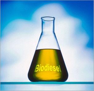 Biodiesel diminui emissões de gases - por Ricardo Ernesto Rose