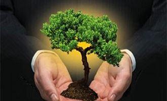 Agricultura brasileira cresce com sustentabilidade