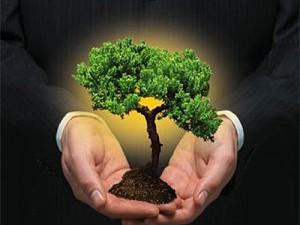 Redução de emissões mobiliza governo e empresas - por Ricardo Ernesto Rose