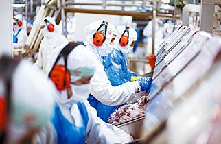 Indústria de processamento de carnes terá espaço exclusivo na AveSui 2013