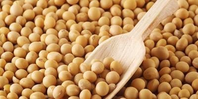 Milho, milho, fotos atualizadas