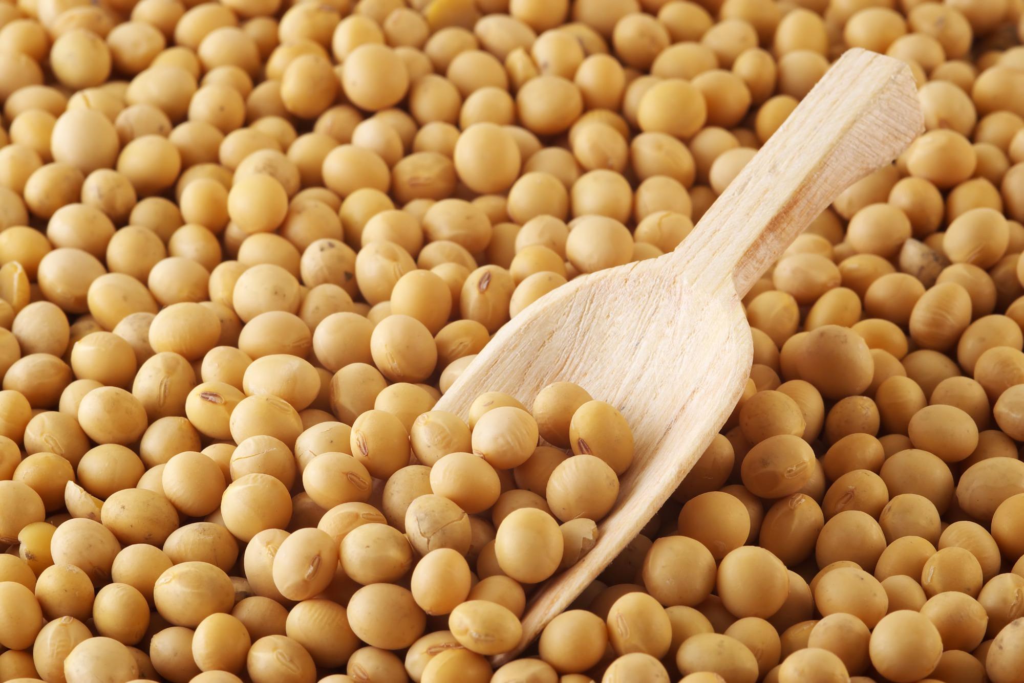 Importações Chinesas de Soja Devem Passar de 105 Milhões de Toneladas em 2029