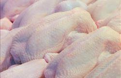 Nova solução de embalagem para a indústria avícola dos EUA
