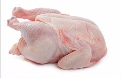 Brasil embarcou US$ 325,6 milhões em carne de frango em junho