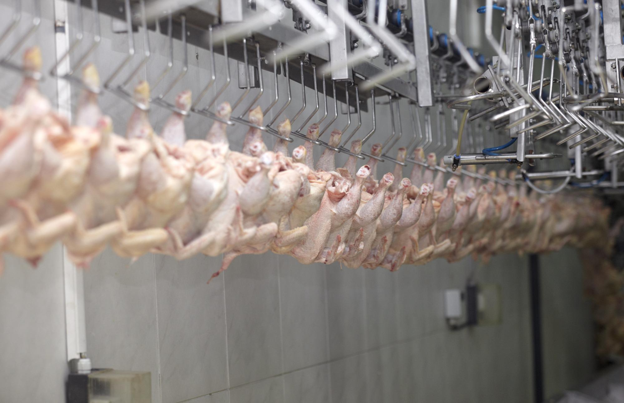 Climatização das salas para processamento - Por Geraldo L Passarelli