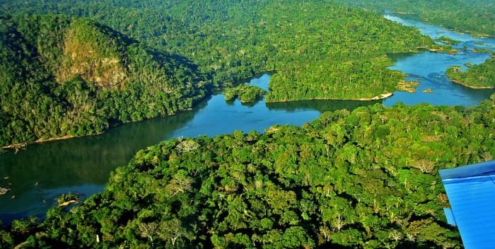 Consumo de madeira da Amazônia - por Ricardo Ernesto