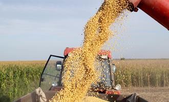 Exportação de soja totaliza 82,3 mi de toneladas em 2020; embarques de milho somam 33,6 mi de toneladas