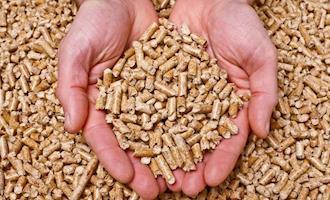 54 usinas produtoras de energia de biomassa já detêm o selo Energia Verde