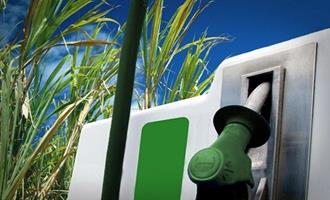 Vendas de etanol hidratado caíram 16% em agosto, dizANP