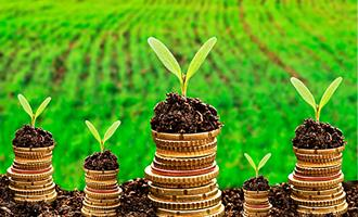 Reforma tributária na agricultura é tema do Brasil em Pauta