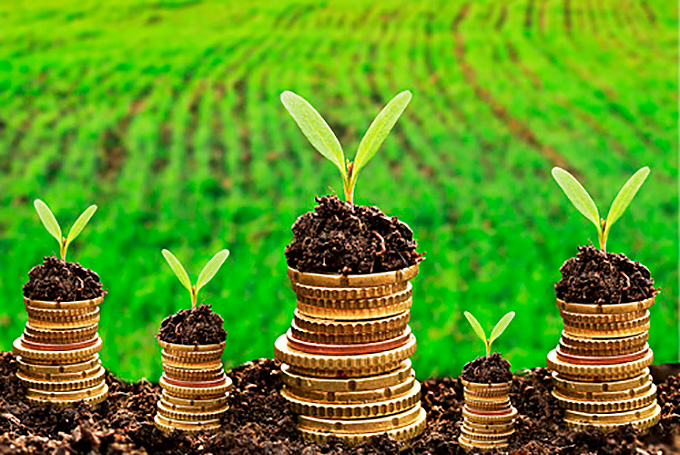 Faturamento do agronegócio deve aumentar em até 25% este ano, diz KPMG