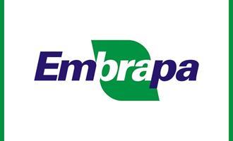 Agronegócio critica sucessão na Embrapa