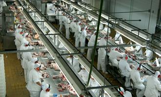 Preço da carne bovina e de aves cai em agosto; demanda externa favorece cotação do suíno, aponta Citi