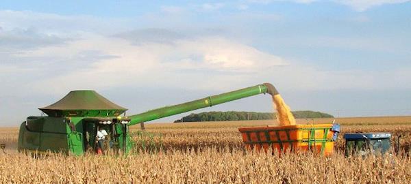 Recorde histórico da safra de grãos agora é de 227,9 milhões de toneladas