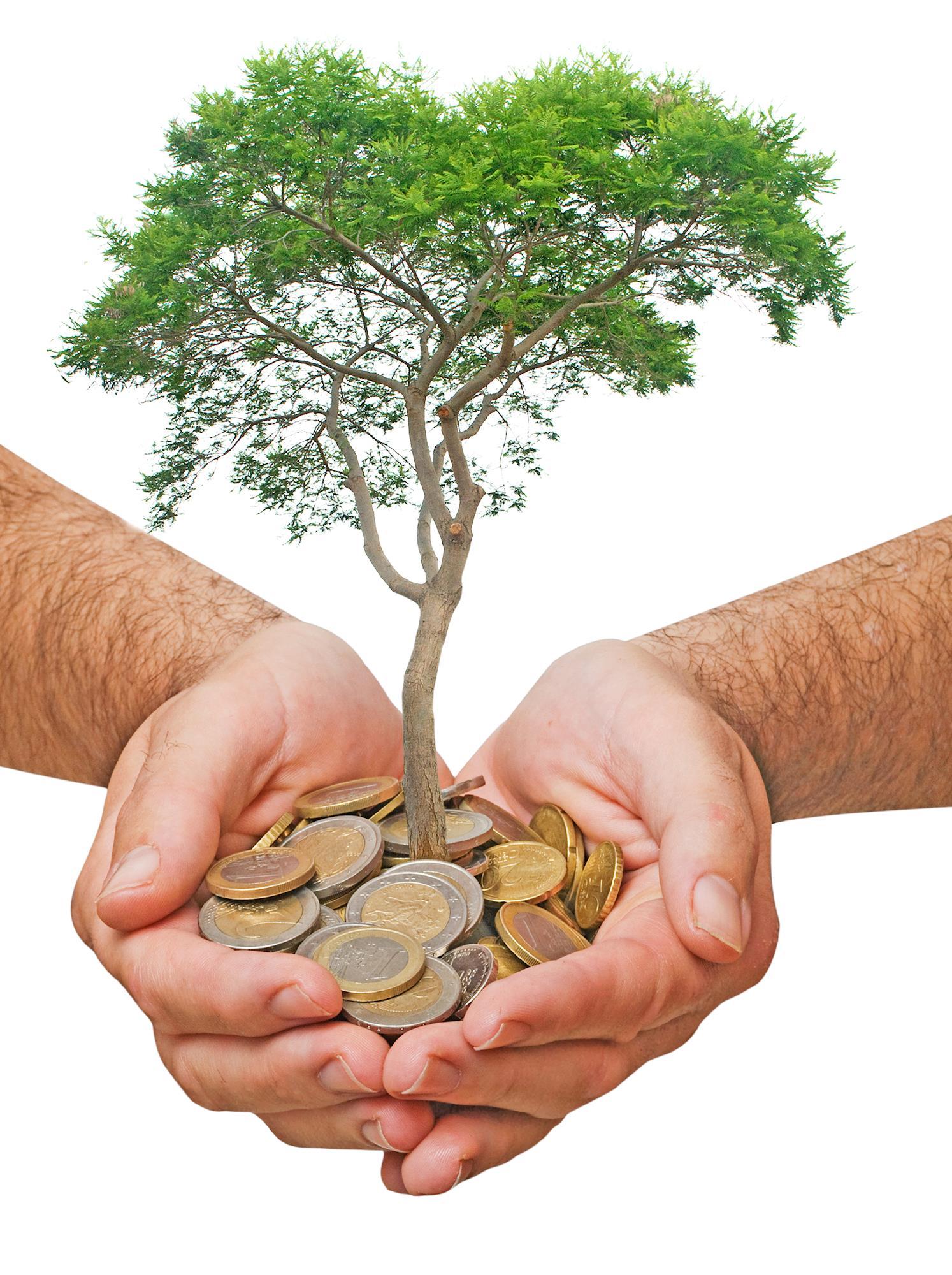 CPFL Renováveis lucra R$ 51,2 milhões no quarto tri de 2017