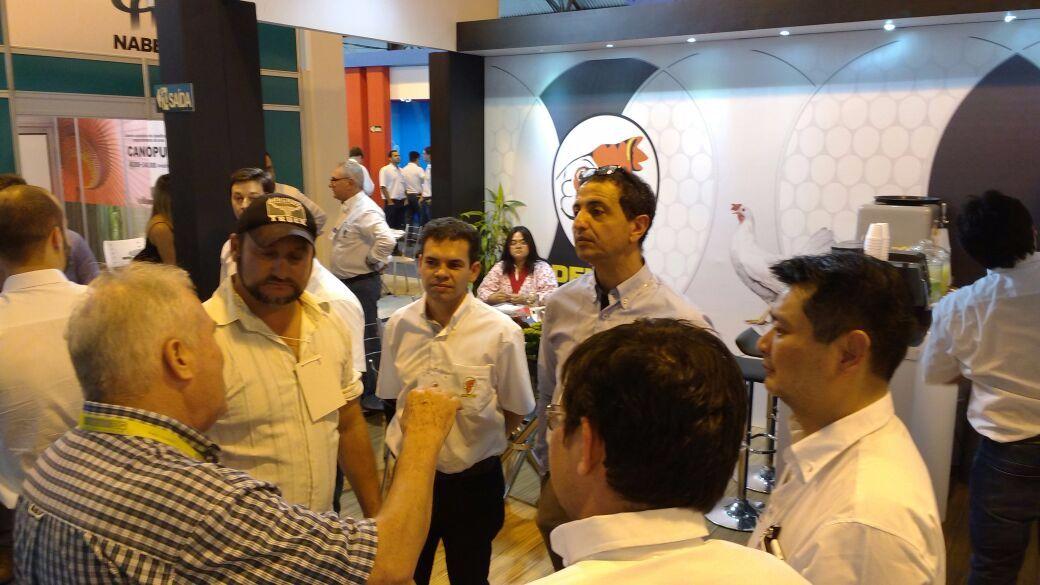 Genética avícola de postura ganha investimentos no Brasil , Genética avícola de postura ganha investimentos no Brasil