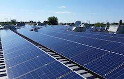 A firme expansão da Risen Energy para o mercado mundial de energia solar