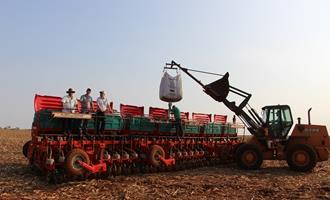 Importações de soja da China devem desacelerar com o uso restrito de farinhas