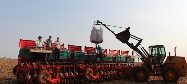 Exportação em ritmo aquecido dá sustentação ao mercado de soja
