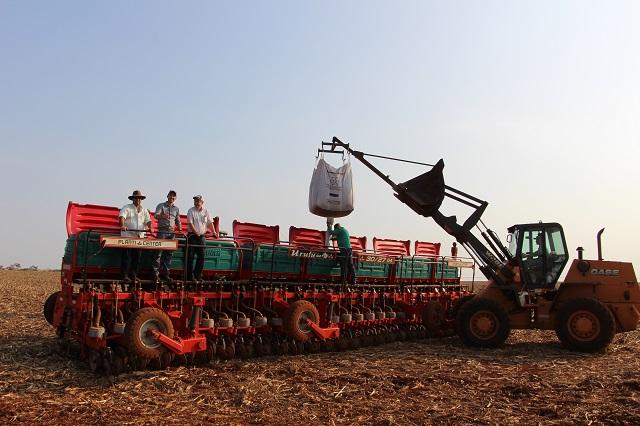 IBGE prevê alta de 1,6% na safra de grãos de 2019