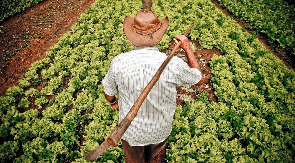 """""""Toda família precisa de um agricultor"""" - Por Coriolano Xavier"""