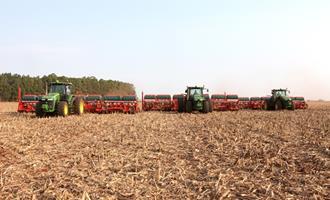 Plantio de soja do Paraná avança para 16% da área projetada com chuvas favoráveis