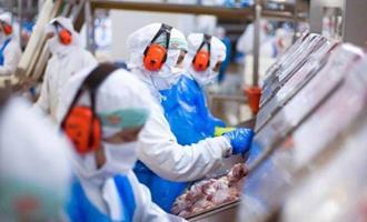 JBS abriu 11 novos mercados para exportação em 2020