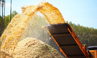 Geração à biomassa aumentou 3% em 2019