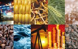 Índice de commodities tem alta de 4,55% em novembro