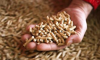 Canadá concede US $ 7,6 milhões ao projeto de expansão de biomassa