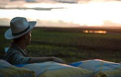 Dinâmica desfavorável de preços diminui renda do agronegócio