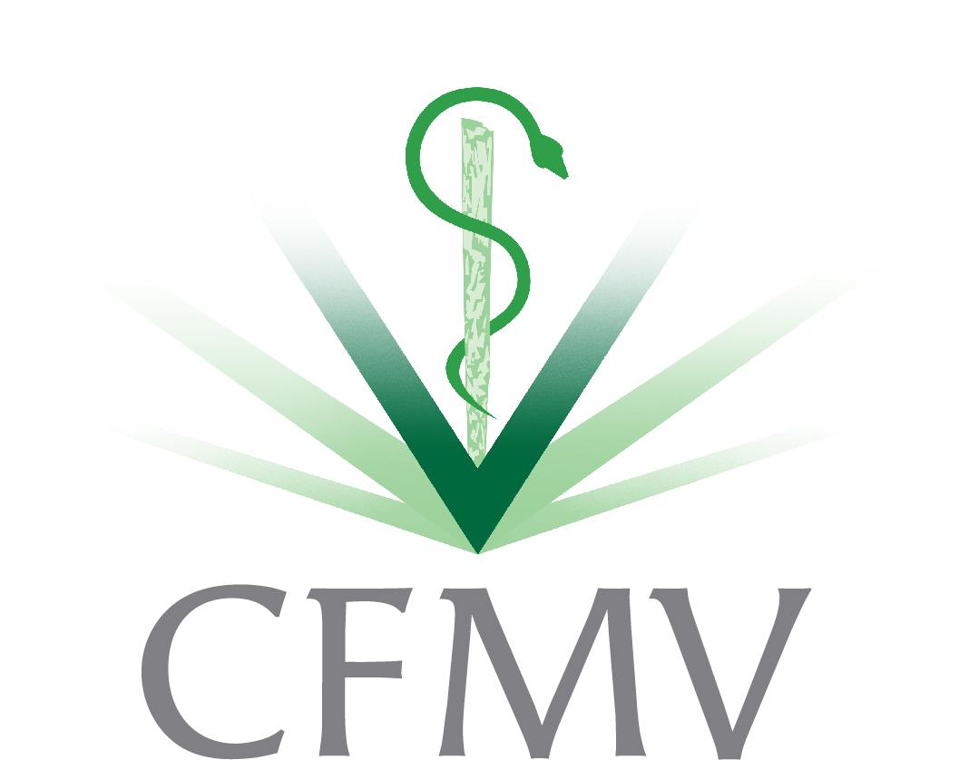 Resultado de imagem para CFMV