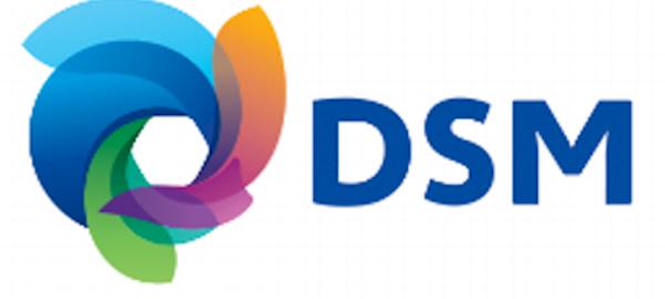DSM divulga crescimento de 6%