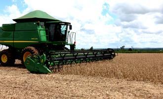 Colheita da soja começa a avançar; dificuldades logísticas preocupam