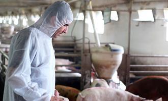 Todos têm um papel a desempenhar no combate ao uso inadequado de antibióticos