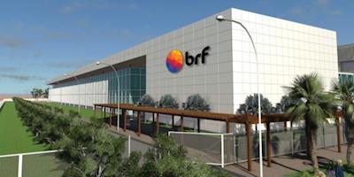 Crescimento e inovação da BRF