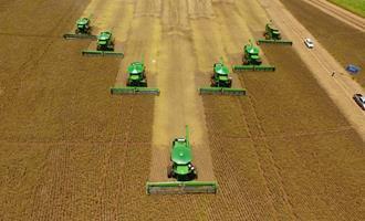 Colheita de soja atinge 9% da área no país; plantio de milho e safrinha no centro-sul chega a 11%