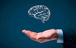 Inteligência emocional - por Valter Bampi