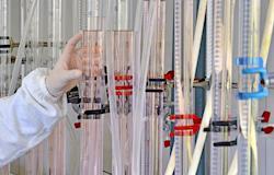 Projeto propõe plano para produção de energia a partir de dejetos suínos em SC