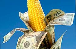 Proposta de UE e Brasil para subsídios causa divergência