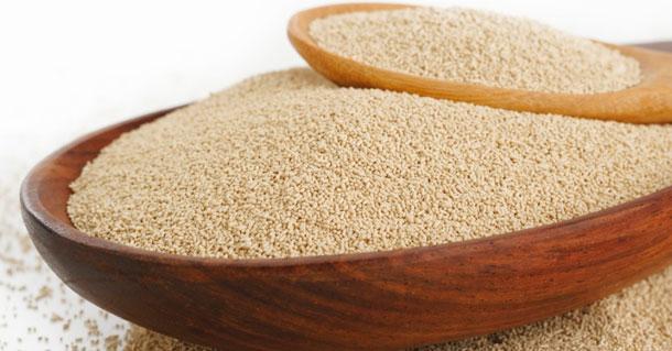 Fibra dietética e fermentação de proteínas no intestino de aves e suínos