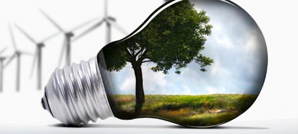 Com fim de subsídios, investidores têm cautela com energia verde