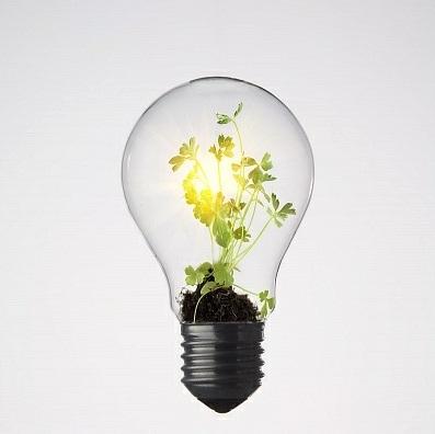Representantes de 20 países defendem que bioenergia é crucial para cumprir Acordo de Paris