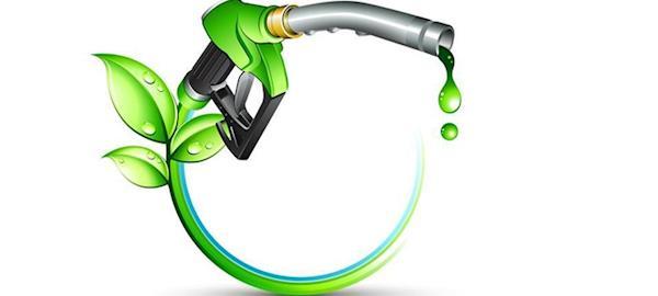 País terá de investir em novos biocombustíveis para cumprir Acordo de Paris