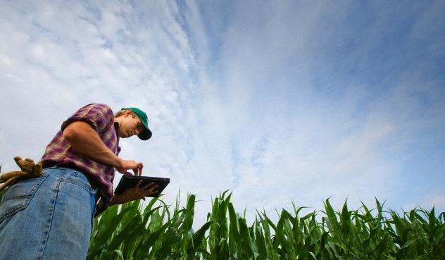 Comissão Brasileira de Agricultura de Precisão se reúne na quarta-feira no Mapa