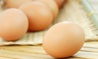Com oferta reduzida, cotações dos ovos sobem