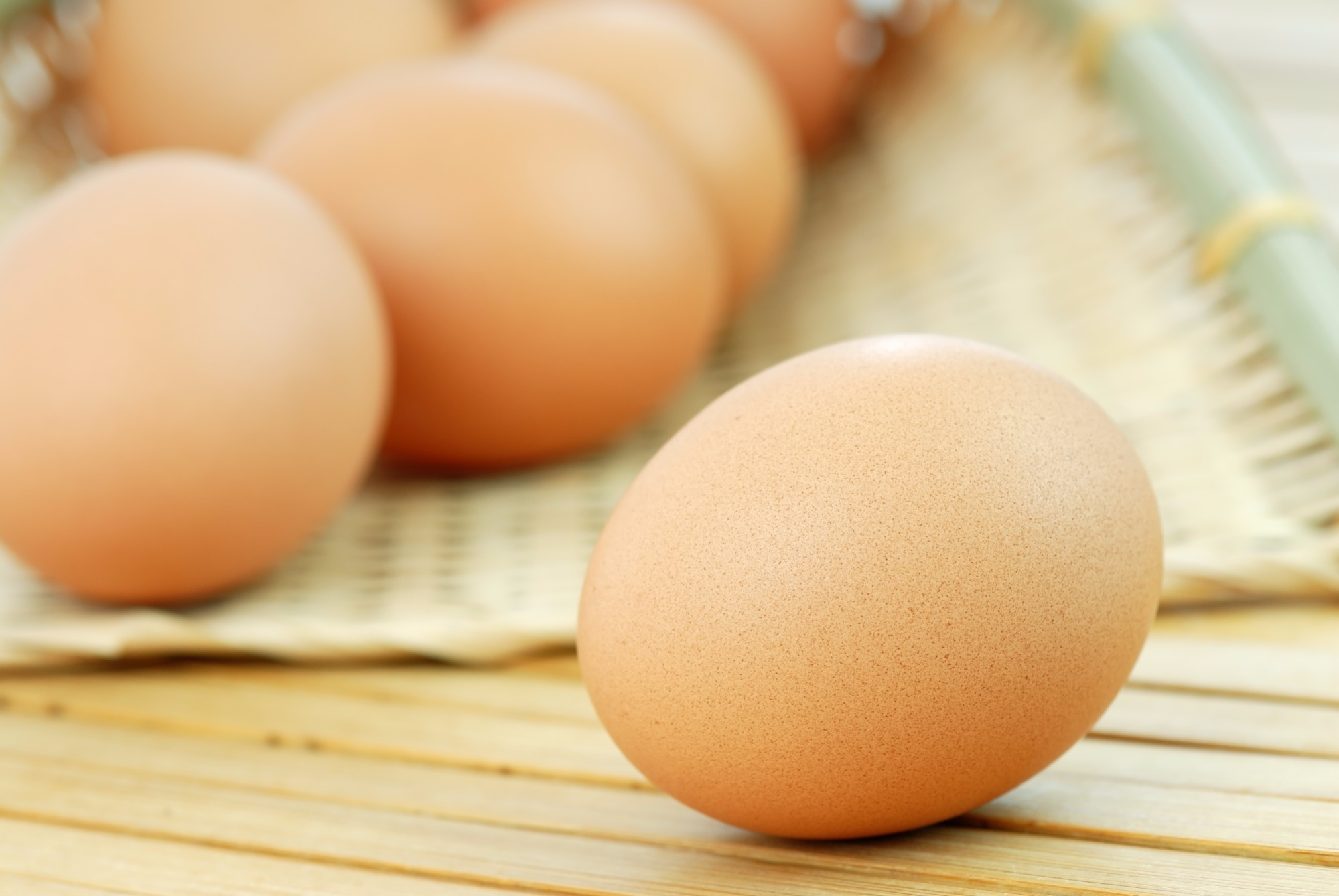 Panel highlights animal welfare in egg production as market demand